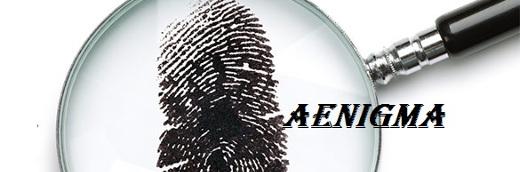 Baner Koła Naukowego AEnigma